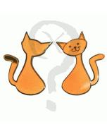 Meandering Cache Cat Geocoin